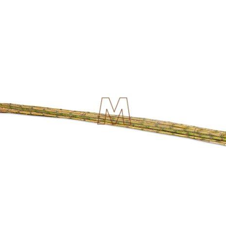 Colihue-4metros